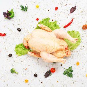 Фото - [:ru]Курица домашняя[:ua]Курка домашня[:]