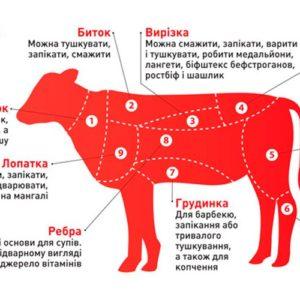 Фото - Котлета  телятина для бургера