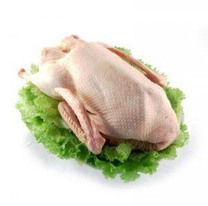 Фото - Утиное мясо: никакого вреда, только польза
