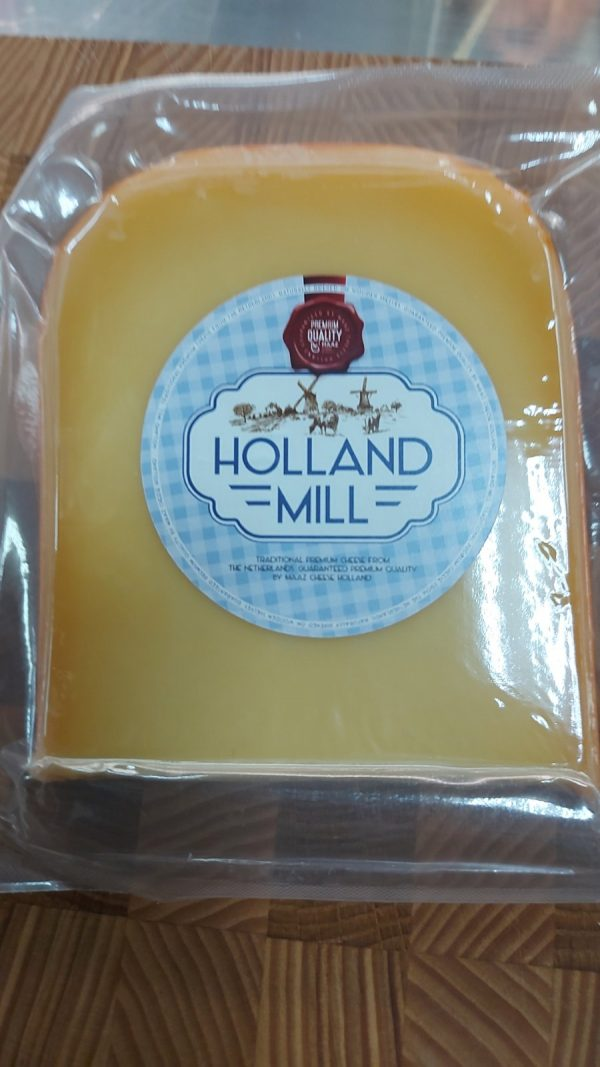 gouda holland mill